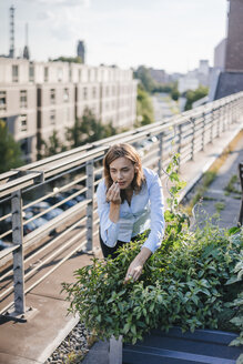 Businesswoman cultivating vegetables in his urban rooftop garden - KNSF02798