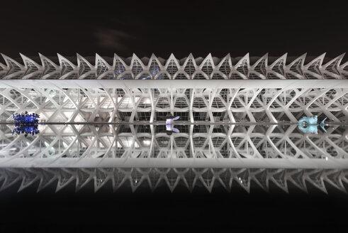 Spain, Valencia, Ciudad de las Artes y de las Ciencias, part of Museo de las Ciencias Principe Felipe at night - DHC00157