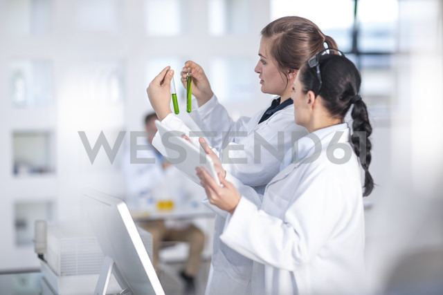 Two scientists working in lab together looking at test tubes - ZEF14603
