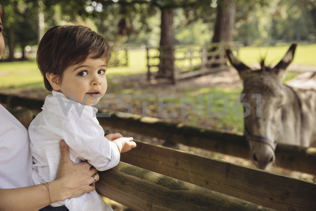 Portrait of toddler being held by his mother in a wildpark - MFF03955