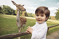 Portrait of happy toddler in a wild park with roe deer in the background - MFF03967