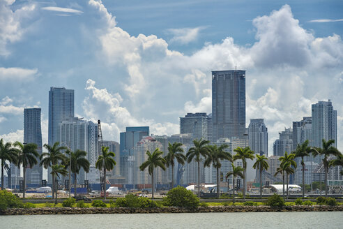 USA, Florida, Miami, Downtown, skyline with high-rises and palm trees - SHF01961