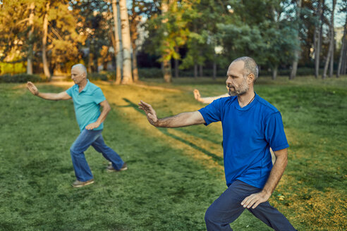 Group of people doing Tai chi in a park - ZEDF00895