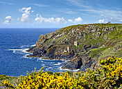 UK, Cornwall, Ruins of old tin mine - SIEF07532