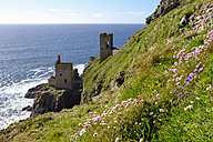 UK, Cornwall, Ruins of old tin mine - SIEF07535