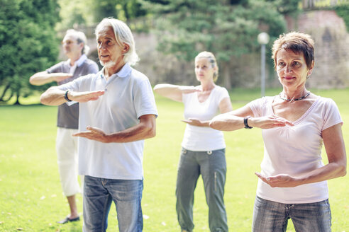 Group of seniors doing Tai chi in a park - PNPF00009