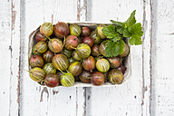 Cardboard box of gooseberries on wood - LVF06291