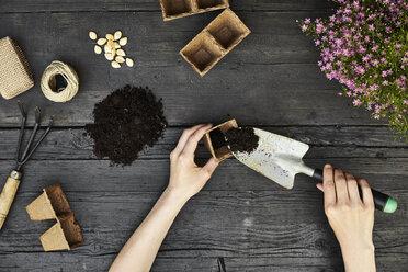 Woman's hands gardening - PDF01408