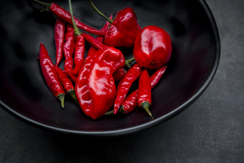 Black bowl of various red chili pods - LVF06312