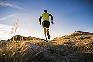 Italy, man running on mountain trail - SIPF01794