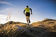 Italy, man running on mountain trail - SIPF01794