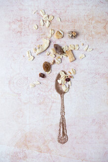 Stamped spoon and ornament with scattered granola - MYF01954