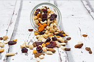 Trail mix - LVF06333