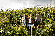 Happy friends in a cornfield - FMKF04571