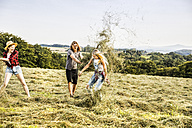 Carefree friends playing with hay in a field - FMKF04577