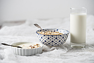 Bowls of granola, oat flakes and natural yoghurt and a glass of milk - MYF01959