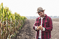 Farmer on field examining corn cob - UUF11906