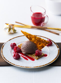 Chocolate icecream with raspberry and pastry - PPXF00108
