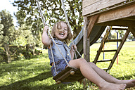 Laughing little girl sitting on swing in the garden - KMKF00023