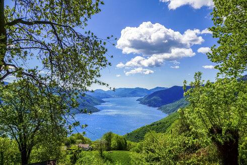 Switzerland, Ticino, View to Lago Maggiore - PUF00827