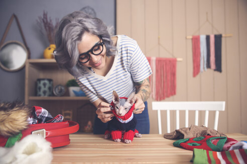 Woman putting pullover on her Sphynx cat at home - RTBF01058