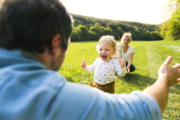 Cute little boy on meadow with parents running towards father - HAPF02296