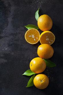 Organic oranges in halves on dark background - CSF28472
