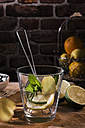 Preparing detox water with mint, rosmary, ginger and limes - CSTF01412