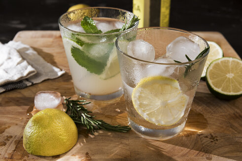Glasses of Gin Tonic with lime, mint, rosmary and ice and with lemon, rosmary and ice - CSTF01427