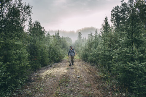 Man walking on path in forest - VPIF00245