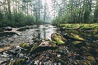 River in rural landscape - VPIF00248