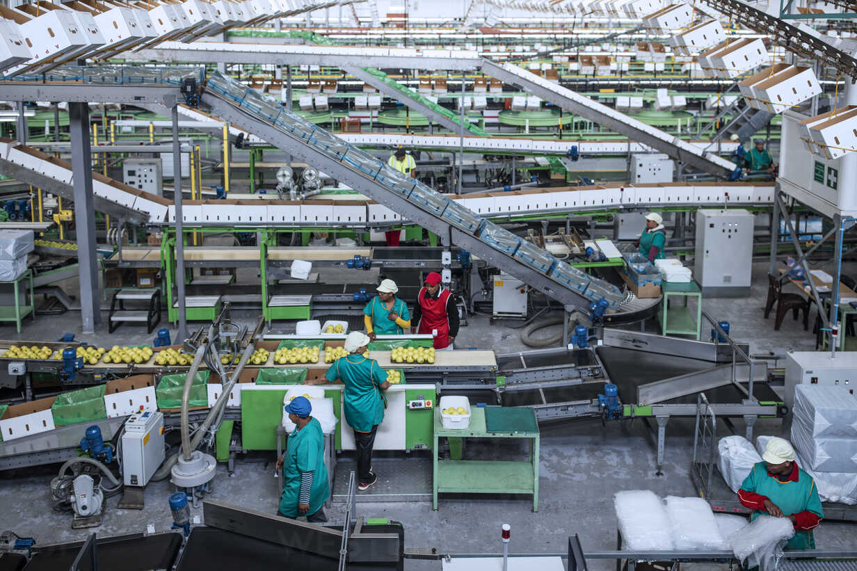People working in apple factory - ZEF14698 - zerocreatives/Westend61