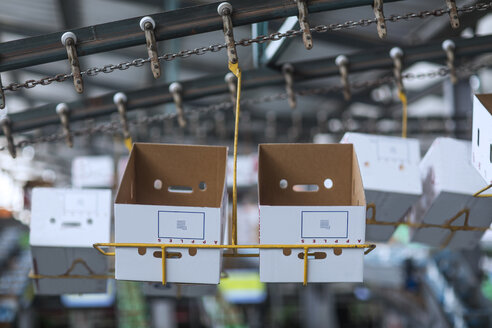 Cardboard boxes in a factory - ZEF14704