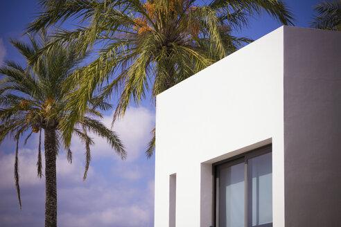 Spain, Formentera, modern finca - CMF00739