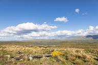 Great Britain, Scotland, Scottish Highlands, Glencoe, Rannoch Moor, Loch Beinn Chaorach and Loch Ba - FOF09510