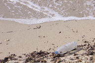 Empty plastic bottle lying on sandy beach at seaside - CMF00754