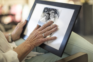 Close-up of senior woman holding a photograph - ZEF14771