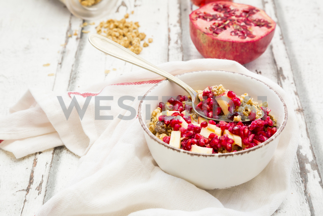 Bowl of fruit muesli with dried cranberries, apple and pomegranate seed - LVF06416 - Larissa Veronesi/Westend61