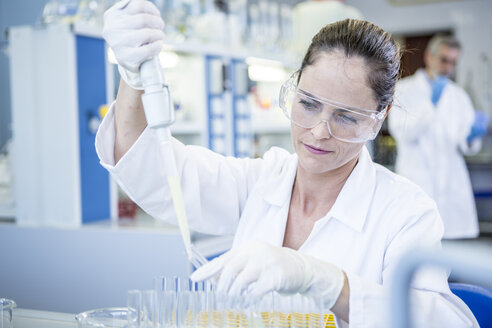 Scientist working in lab pipetting - WESTF23700