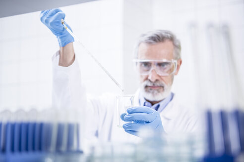 Scientist working in lab pipetting - WESTF23733