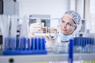 Scientist in lab examining seed samples - WESTF23757