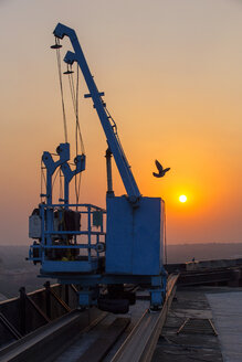 India, Delhi, New Delhi, crane, bird, sunset, pollution, smog - NDF00689