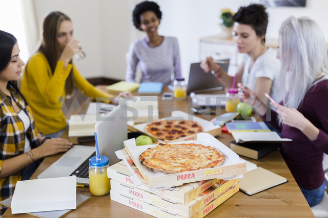 Group of young women at home studying and having pizza - GIOF03392
