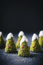 Chocolate cake, christmas tree shaped, decorated with pistachio and icing - HESF00003