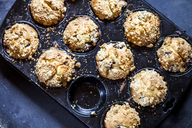 Muffins in a baking tray - SBDF03374