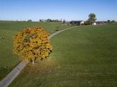 Germany, Bavaria, Upper Bavaria, Landsberied, relocated farm in autumn - GNF01417