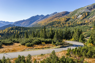 Switzerland, Canton of Graubuenden, Swiss Alps, San Bernardino Pass, Passo del San Bernardino - STSF01431