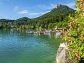 Austria, Upper Austria, Salzkammergut, Lake Fuschlsee - AMF05533