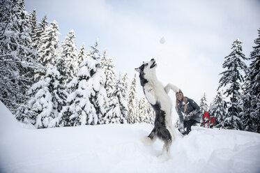 Austria, Altenmarkt-Zauchensee, young woman with dog in winter forest - HHF05532