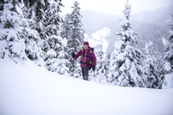 Austria, Altenmarkt-Zauchensee, young woman with dog on ski tour in winter forest - HHF05535